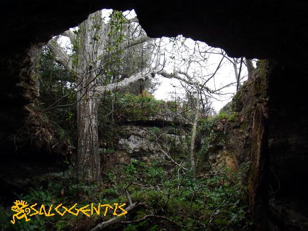 Grotta del Noce, Galatone - ingresso visto dall'interno