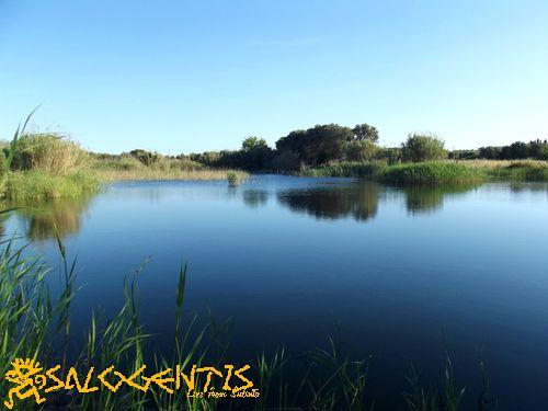 Lago della Signureddha