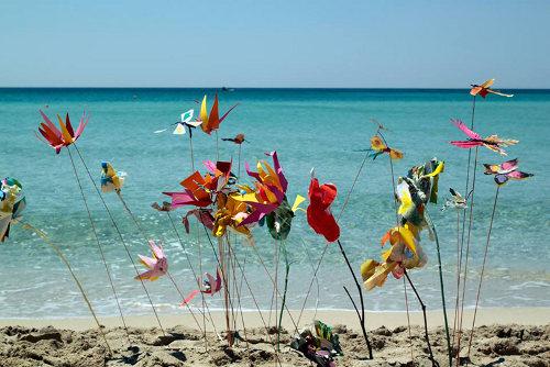 Farfalle sulla sabbia, Sandro Greco