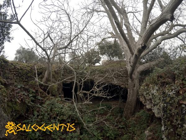 Grotta del Noce, Galatone - ingresso