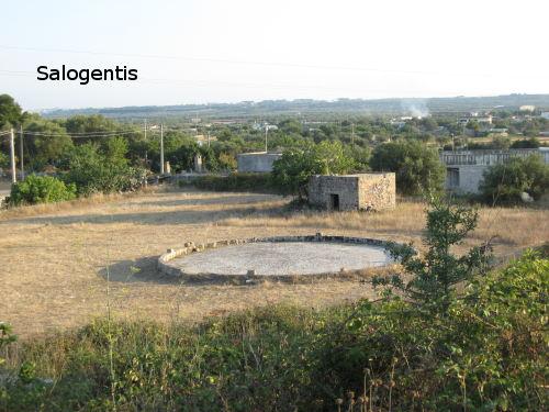 Ajara - serviva per la pulizia del grano dopo la raccolta