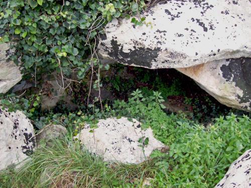 Sito archeologico di Cardigliano