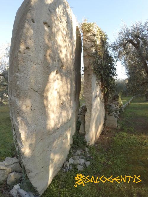 Cava di pietra leccese. Area riqualificata all'agricoltura