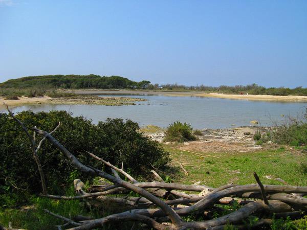 Risultati immagini per isola dei conigli porto cesareo